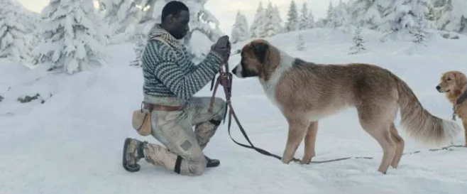 Motion capture tworzenie filmowych postaci - zew natury pies buck